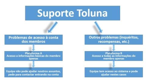 Suporte Toluna
